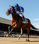 Fully Vested (no. 2) wins Race 7 July 26 at Saratoga Race Course, Saratoga Springs, NY.    Ridden by Joe Bravo and trained by Thomas Albertrani, Fully Vested finished 5 1/4 lengths in front of Leinster (no. 5) in the 6 furlong race.  (Bruce Dudek/Eclipse Sportswire)