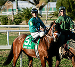 Feb 2010:  Random Move and Miguel Mena before the Risen Star Stakes at the Fairgrounds in New Orleans, La.