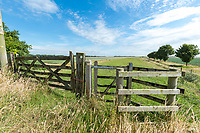 Public footpath with stock gate - Lincolnshire, July
