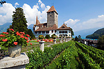 CHE, Schweiz, Kanton Bern, Berner Oberland, Spiez: Schloss Spiez am Thunersee   CHE, Switzerland, Bern Canton, Bernese Oberland, Spiez: castle Spiez at Lake Thun