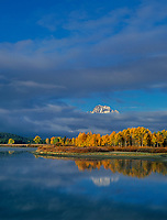 749450326v clouds from a clearnig storm hide all but the peak of mount moran along the oxbow bend with aspens in brillilant yellow fall color on the snake river in grand tetons national park wyoming
