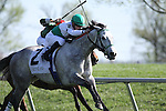 Forever Together with Julien Leparoux up runs second in The Jenny Wiley (grII) at Keeneland Race Course. 04.10.2010