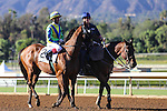 """October 4, 2014 Rich Tapestry with Olivier Doleuze up defeats Goldencents with Rafael Bejarano to win the """"Win and You're In"""" Santa Anita Sprint Championship at Santa Anita Park in Arcadia CA. Zoe Metz/ESW/CSM"""