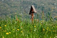 Casa ritiri spirituali  Eremo di Eupilio-Como<br /> La collina dello Spirito:preghiera e silenzio. Via crucis