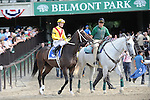 Rachael Alexandra and Calvin Borel go to post for The Mother Goose Stakes 6/27/09