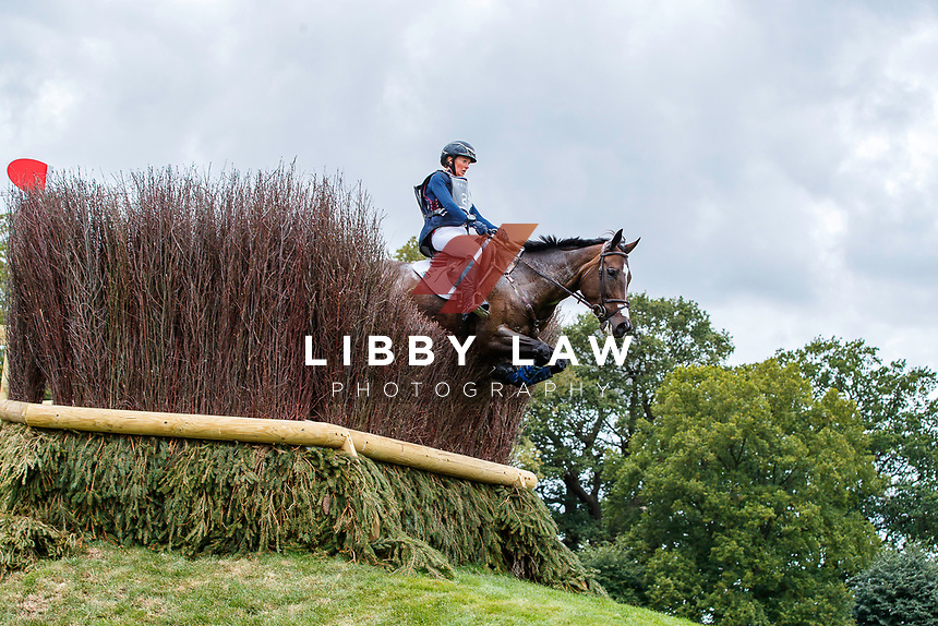 USA-Andrea Baxter rides Indy 500 during the Cross Country. 2019 GBR-Land Rover Burghley Horse Trials. Saturday 7 September. Copyright Photo: Libby Law Photography