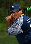14-Yankees