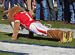 Houston Cougars mascot, Shasta, in action during the Ticket City Bowl game between the Penn State Nittany Lions and the University of Houston Cougars, played at the Cotton Bowl Stadium in Dallas, Texas. Houston defeats Penn State 30 to 14.