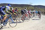 The peloton tackle Sector 3 Bagnaia of gravel during the 2015 Strade Bianche Eroica Pro cycle race 200km over the white gravel roads from San Gimignano to Siena, Tuscany, Italy. 7th March 2015<br /> Photo: Eoin Clarke/www.newsfile.ie