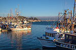 San Luis Obispo County, CA<br /> Fishing boats in the harbor at Morro Bay