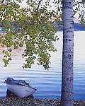 Autumn in fjordland, Norway