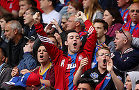 Pictured: A Crystal Palace supporter celebrates his team's win<br />