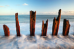 Great Britain, East Sussex, Winchelsea Beach: Rotting wooden posts on beach