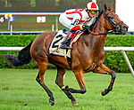 August 21, 2021: Technical Analysis #2, ridden by jockey Jose L. Ortiz win the Grade 2 Lake Placid Stakes on the turf at Saratoga Race Course in Saratoga Springs, N.Y. on August 21st, 2021. Dan Heary/Eclipse Sportswire/CSM