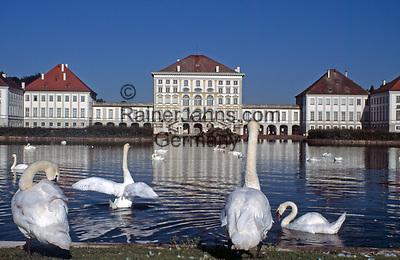DEU, Deutschland, Bayern, Oberbayern, Muenchen: Schwaene vorm Schloss Nymphenburg | DEU, Germany, Bavaria, Upper Bavaria, Munich: Swans at Castle Nymphenburg