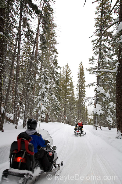 Snowmobiling at Zephyr Cove, South Lake Tahoe, Nevada