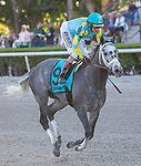 February 29, 2020: #9 Gidu, John Velazquez, The Canadian Turf Stakes. Scenes from Fountain of Youth Stakes Day on February 29th, 2020 at Gulfstream Park in Hallandale Beach, Florida. LizLamont/Eclipse Sportswire/CSM