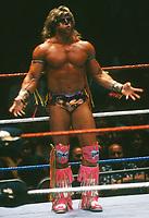 Ultimate Warrior  1991                                       By John Barrett/PHOTOlink