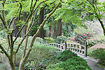 Moon Bridge over strolling pond.  The Japanese Garden in Portland is a 5.5 acre respit.  Said to be one of the most authentic Japanese Garden's outside of Japan, the rolling terrain and water features symbolize both peace and strength.