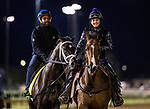 LOUISVILLE, KY - MAY 02: Always Dreaming on the track at Churchill Downs on May 02, 2017 in Louisville, Kentucky. (Photo by Alex Evers/Eclipse Sportswire/Getty Images)