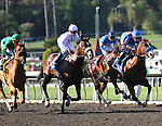 February 13, 2010.Caracortado riden by Paul Atkinson, moves up on the outside to win The Robert B. Lewis Stakes at Santa Anita Park, Arcadia, CA
