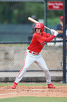Philadelphia Phillies Mickey Moniak (15) at bat during an Instructional League game against the Atlanta Braves on October 9, 2017 at the Carpenter Complex in Clearwater, Florida.  (Mike Janes/Four Seam Images)