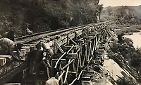 BNPS.co.uk (01202) 558833<br /> Pic: Tennants/BNPS<br /> <br /> The notorious 'Death Railway' along the River Kwai in Burma built by the POW's<br /> <br /> Cartoon drawings and photographs documenting life in a brutal Japanese prisoner of war camp have been found in an archive belonging to a former soldier. <br /> <br /> The satirical sketches depicting the plight of the British PoWs were produced in secret by Captain Harry Witheford and fell inmate Ronald Searle, the famous illustrator. <br /> <br /> The scenes included the notorious Changi PoW camp in Singapore and the building of the 'Death Railway' along the River Kwai in Burma. <br /> <br /> There are three previously unseen cartoons by Searle. <br /> <br /> One is a sketch to mark Capt Witheford's wife Edna's birthday on April 10, 1944, which shows four officers wearing only loincloths toasting her with mugs of beer.<br /> <br /> Searle also created a calendar for his friend which depicted an image of an army officer lying besides a naked blonde woman. <br /> <br /> Capt Witheford's accomplished work includes a drawing of a prisoner having a bath covered in sunburns from working on the railway.