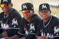 Miami Marlins Garvis Lara (center) in between Albert Guaimaro (left) and Yefry Reyes (right) during a minor league Spring Training game against the New York Mets on March 26, 2017 at the Roger Dean Stadium Complex in Jupiter, Florida.  (Mike Janes/Four Seam Images)