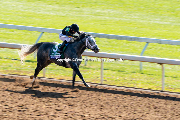 November 7, 2020 : Knicks Go, ridden by Joel Rosario, wins the Big Ass Fans Dirt Mile on Breeders' Cup Championship Saturday at Keeneland Race Course in Lexington, Kentucky on November 7, 2020. Scott Serio/Eclipse Sportswire/Breeders' Cup/CSM