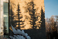 Spruce trees cast shadows on UAA's ConocoPhillips Integrated Science Building in the low winter sun.
