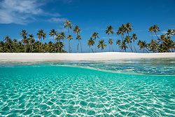 A unique view from above and below the aquamarine waters surrounding the white sand and palm trees on this picturesque island in the Indian Ocean.<br /> Artist Edition: 15/100 Limited