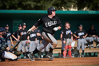 Edgewood Eagles Nick Lehner (36) hits a home run during the first game of a doubleheader against the Lasell Lasers on April 14, 2016 at Terry Park in Fort Myers, Florida.  Edgewood defeated Lasell 9-7.  (Mike Janes/Four Seam Images)
