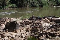 CAMPINAS, SP, 12.08.2015: CRISE-HIDRICA-SP - O Rio Atibaia registrou a vazão de 6.49 m3/s na manhã desta quarta-feira (12) no ponto de captação em Valinhos. Já no trecho de que passa por Campinas a vazão chegou a 2.65 m3/s. O volume tem registrado quedas nos últimos dias no manancial que é responsável pelo abastecimento de Campinas e recebe água do sistema Cantareira. (Foto: Denny Cesare/Código19)