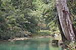Blue Creek Cave trail, Punta Gorda, Belize