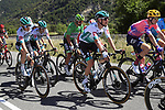 The peloton including  Lukas Postlberger (AUT) and Green Jersey Peter Sagan (SVK) Bora-Hansgrohe take it easy during Stage 5 of Tour de France 2020, running 183km from Gap to Privas, France. 2nd September 2020.<br /> Picture: Bora-Hansgrohe/BettiniPhoto   Cyclefile<br /> All photos usage must carry mandatory copyright credit (© Cyclefile   Bora-Hansgrohe/BettiniPhoto