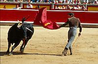 San Fermin. Stierkampf in Pamplona, Navarra, Spanien