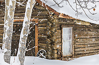 Log cabin in winter, Wiseman, Arctic, Alaska.