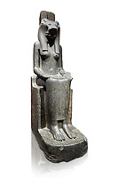 "Ancient Egyptian statue of goddess Sekhmet, grandodiorite, New Kingdom, 18th & 20thDynasty (1390-1150 BC), Thebes. Egyptian Museum, Turin. white background.<br /> <br /> Sekhmet, ""the Powerful One"" was a fearsome goddess symbolised by her lioness head. Daughter of the sun she personifies the disk of the world during the day. Sekhmet is the angry manifestation of Hathor inflicting the scourges of summer heat, famine and illness which is why the goddess needed to be exorcised every day. Drovetti Collection. C 249"