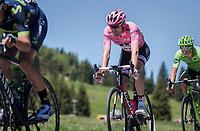 Tom Dumoulin (NED/Sunweb) relaxed while descending the Passo Monte Croce Comelico / Kreuzbergpass (1636m)<br /> <br /> Stage 19: San Candido/Innichen › Piancavallo (191km)<br /> 100th Giro d'Italia 2017