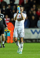 Sunday 09 November 2014 <br /> Pictured: Neil Taylor of Swansea<br /> Re: Barclays Premier League, Swansea City FC v Arsenal City at the Liberty Stadium, Swansea, Great Britain.