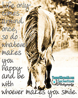 Quotes to Inspire, Inspiration, Horses, Love, Best Photo of the Month
