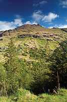 The Cobbler (Ben Arthur) from the Cat Craig Loop, the Argyll Forest Park above Glen Croe, Argyll & Bute