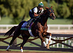 OCT 27: Breeders' Cup Turf entrant Channel Maker, trained by William I. Mott,  works at Santa Anita Park in Arcadia, California on Oct 27, 2019. Evers/Eclipse Sportswire/Breeders' Cup