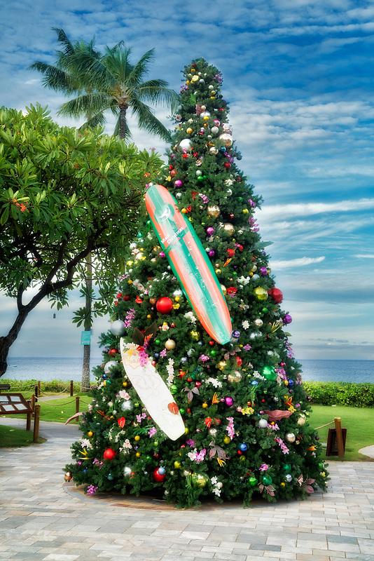 Surfboard Christmas tree.  Kaanapali Beach, Maui, Hawaii