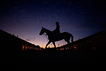 April 27, 2021 Horses walk through the barn area at Churchill Downs in Louisville, Kentucky on April 27, 2021. EversEclipse Sportswire/CSM