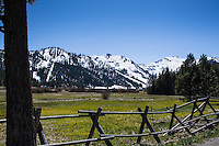 Behind a rustic log fence a meadow in spring-green stretches toward the snow covered mountains under a clear blue sky at Squaw Valley in the Sierra Nevada.
