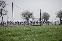 peloton   <br /> <br /> Bredene Koksijde Classic (2019) ( former Handzame Classic )<br /> Bredene > Koksijde 199km (BEL)<br /> <br /> ©kramon