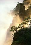 Huanshan pines, Ridges and mist, Huangshan, China