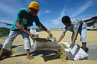 jbo70177 agriculture nutrition food crops paddy rice milling mill labourer worker dry rice in ricemill on Negros Philipines asia.Asien Philippinen Arbeit Landwirtschaft Ernährung Arbeiter trocknen Reis in Reismühle.copyright Joerg Boethling/agenda ph. ++49 40 39190714