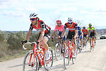 The grupetto climbs sector 8 Monte Santa Maria during Strade Bianche 2019 running 184km from Siena to Siena, held over the white gravel roads of Tuscany, Italy. 9th March 2019.<br /> Picture: Seamus Yore   Cyclefile<br /> <br /> <br /> All photos usage must carry mandatory copyright credit (© Cyclefile   Seamus Yore)
